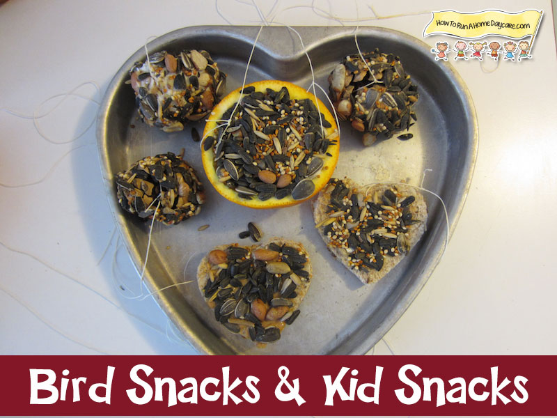 Kid-Snack-and-Bird-Snacks